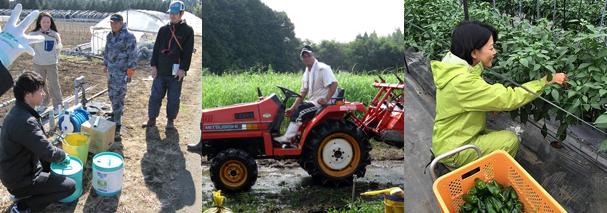 新規就農 研修 実践研修 模擬研修 2年目の研修