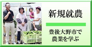 新規就農 豊後大野市 九州大分県 で 農業を学ぶ